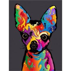 chihuahua-dog
