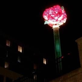 lanc-red-rose
